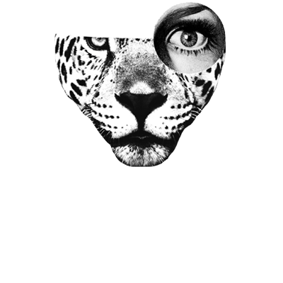 Pagu Pictures